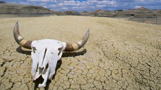 Death-Valley-National-Park-California.jpg